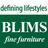 blimsfurniture
