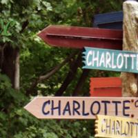 Live Love Charlotte | Social Profile