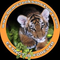 Bear Creek Sanctuary | Social Profile