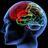 @Neuroscience36