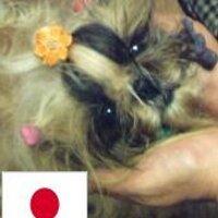 ヤリガイ | Social Profile