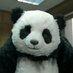 asabi panda's Twitter Profile Picture