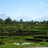 Bali_Holidays profile