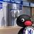 Pingu Blues | Social Profile