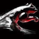 Photo of PumaSailing's Twitter profile avatar