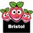 BristolRaspberryJam | Social Profile