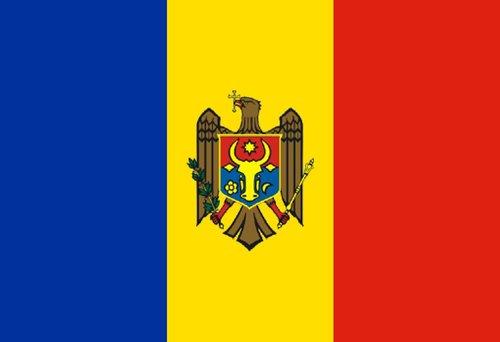 Moldsu Social Profile