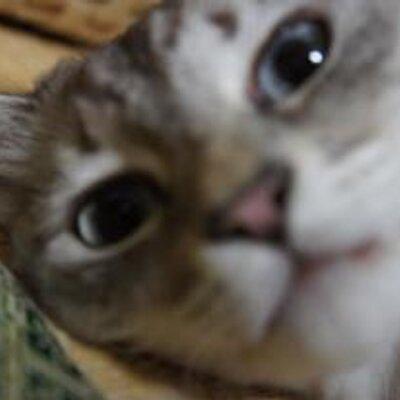 yuki | Social Profile
