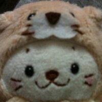 yoshinori / はちぶーん | Social Profile