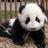 @WayneWeiZhang