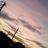 新田ハチ子 nitta85_696 のプロフィール画像