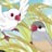 尾上羽夢@とりづくし | Social Profile