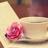 ~salwa alkuwari~ | Social Profile