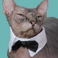 Yogi The prejident | Social Profile
