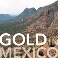 Golden Goliath | Social Profile