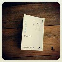 nanami | Social Profile