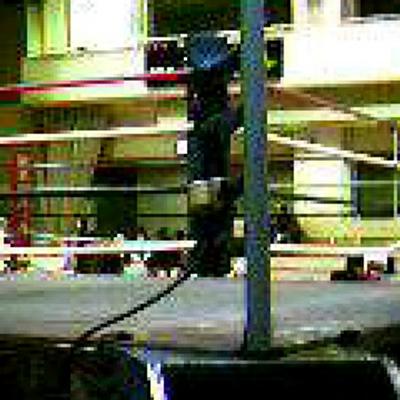 boxingfan | Social Profile