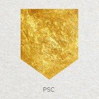 Pocket Square | Social Profile