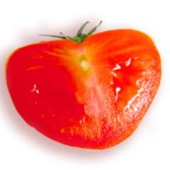 CookSister Social Profile