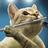 The profile image of sachienne_fl