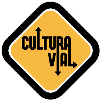 Cultura Vial   Social Profile