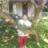 Shirley_Nesi