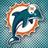 Dolphins_world