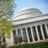 Profile picture of MIT from Twitter