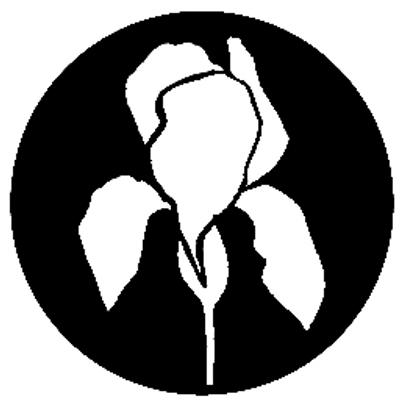 NASHVILLE'S DEAD | Social Profile