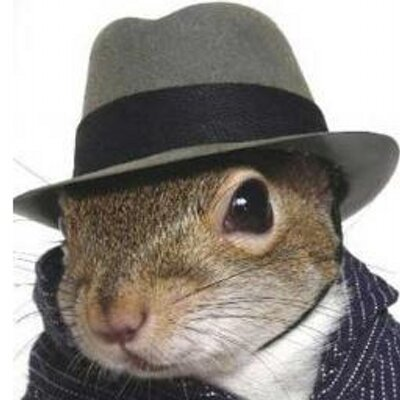 Secret Squirrel | Social Profile