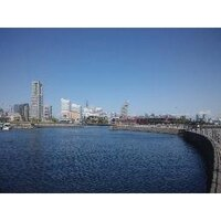 katagiri | Social Profile