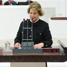 Prof. Turkan DAĞOĞLU  Twitter Hesabı Profil Fotoğrafı