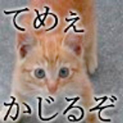ɥsɐu@C91 一日目西み-22b | Social Profile