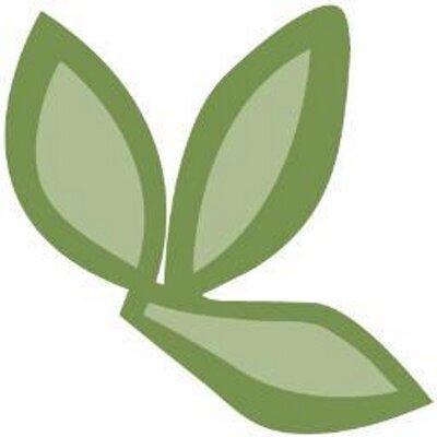 Healing Thyme | Social Profile
