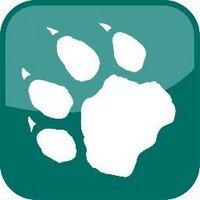 Wildcat Mountain | Social Profile