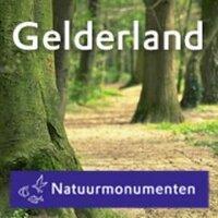 NM_Gelderland