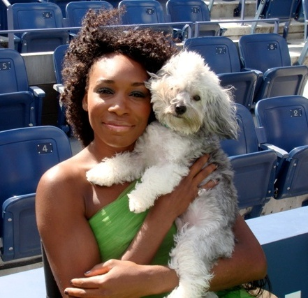Venus Williams Social Profile