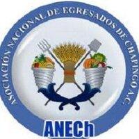 @anechoax