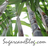 @SugarcaneBlog