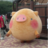 R_Kogure