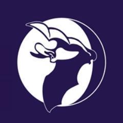 BatConservationTrust Social Profile