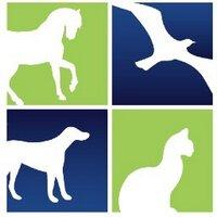 Humane Society of LA   Social Profile