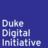Duke DDI