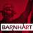 @barnhartcrane