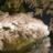 The profile image of Masatuksa