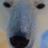 The profile image of jeremyindie
