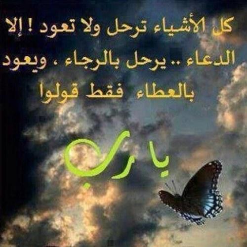 استغفر الله Social Profile