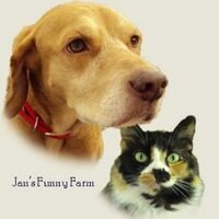 Jan's Funny Farm | Social Profile