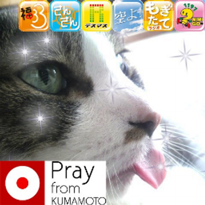 ROJO(ロホ)   Social Profile