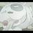 The profile image of shimon322